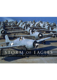 Storm of Eagles   Dibbs John, ISBN:  9780785837169