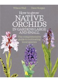 How to Grow Native Orchids in Gardens Large and Small   Wall Wilson, ISBN:  9780857844606