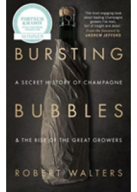 Bursting Bubbles   Walters Robert, ISBN:  9781846892790