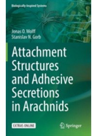 Attachment Structures and Adhesive Secretions in Arachnids   Wolff Jonas O., ISBN:  9783319457123