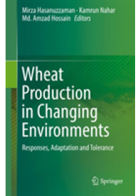 Wheat Production in Changing Environments   , ISBN:  9789811368820