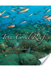 Texas Coral Reefs   Cancelmo Jesse, ISBN:  9781585446339