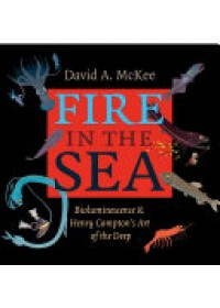 Fire in the Sea   McKee David A., ISBN:  9781623490317