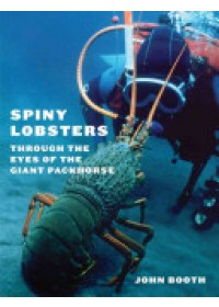 Spiny Lobsters   Booth John, ISBN:  9780864736550