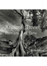 Ancient Trees   Moon Beth, ISBN:  9780789211958